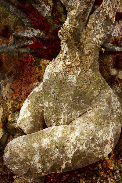 Torso--Pigment print on canvas embellished with acrylic paint, sand, and gold, copper & silver leaf