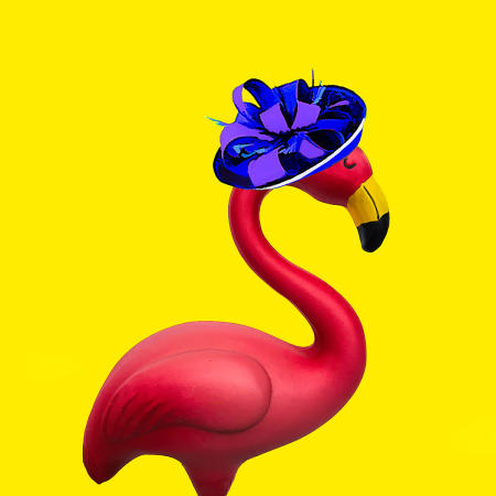 Fashionista Flamingo #2