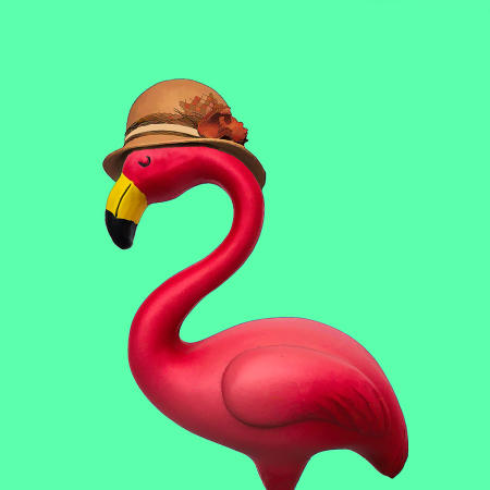 Fashionista Flamingo #3